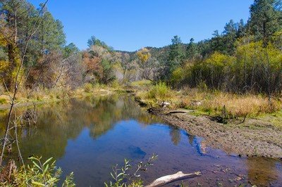Gila Trout Recovery Area 1